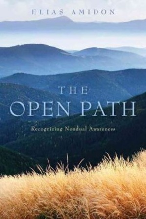 Open Path - Recognizing Nondual Awareness By Elias Amidon
