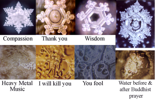 emoto water crystals